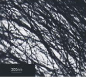 Aligned carbon nanotube powder with 200 nanometer size reference